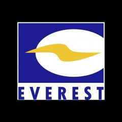 EverestGroup